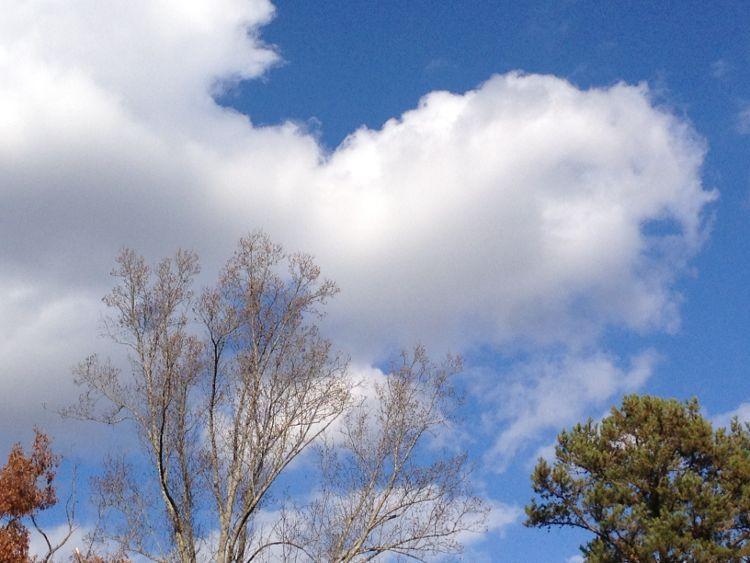 Blue Sky Sketching